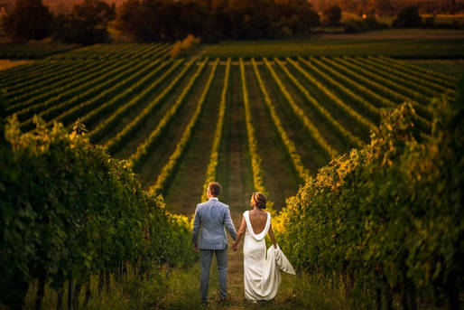 Planwagenfahrt Pfalz Hochzeit
